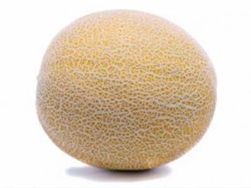 VDB Pro Seeds Melon Fruit